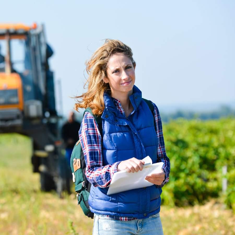 Logiciels gestion cooperative viticole